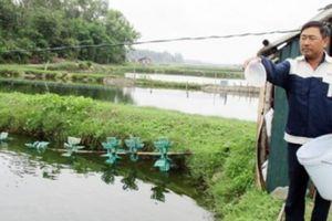 Tam Phú quyết tâm về đích đúng lộ trình nông thôn mới cuối năm 2018