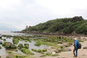 Quận Liên Chiểu đề xuất giữ lại ghềnh đá Nam Ô