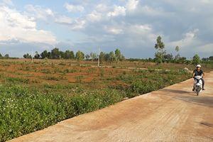 Cần xử lý nghiêm hàng loạt sai phạm về đất đai ở Gia Lai