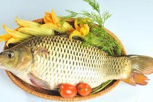 Hai món ăn bài thuốc từ cá giúp người viêm khớp không đau nhức