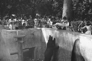 Ảnh độc về Thảo Cầm Viên SG 1970 của Carl Nielsen