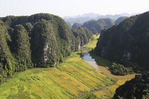 Ngỡ ngàng vẻ đẹp mùa lúa chín vùng Tam Cốc nhìn từ Hang Múa