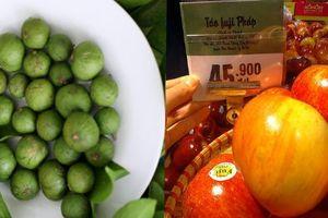 Trái sấu đầu mùa đắt hơn cả hoa quả nhập khẩu