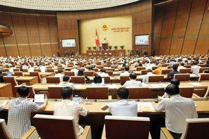 Thảo luận về dự thảo Luật Phòng, chống tham nhũng (sửa đổi)
