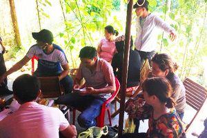 Bắt 6 người từ Đà Nẵng vào Quảng Nam tổ chức đánh bạc