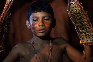 Những bộ lạc kỳ lạ trên thế giới: Cho kiến độc đốt trong lễ trưởng thành
