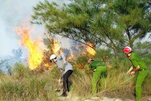 Thái Nguyên: Đốt lửa khi dọn bãi trồng rừng, 2 phụ nữ tử vong