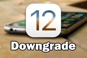 Hướng dẫn hạ cấp iOS 12 về lại iOS 11 không mất dữ liệu ứng dụng