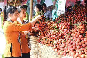 Nông sản Việt như cô gái đẹp, nhưng chỉ ngồi nhà chờ người đến tán tỉnh