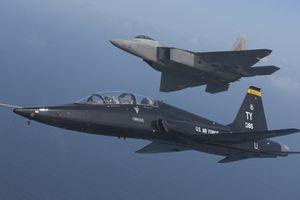 Máy bay Việt Nam có thể nhận từng 'hạ' hàng chục F-22