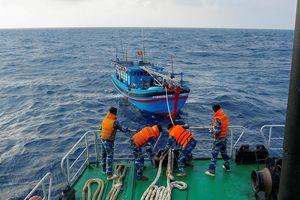 Tàu cá Khánh Hòa bị tàu lạ đâm chìm trên biển