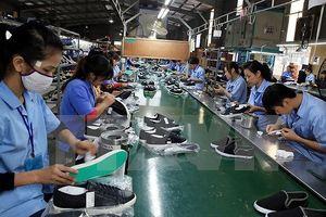 Ngành da giày Việt Nam vẫn phải nhập khẩu nguyên liệu tới 60%