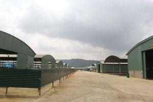 Bắt giam 2 đối tượng chiếm đoạt 110 tỷ đồng tại dự án chăn nuôi bò lớn nhất Hà Tĩnh