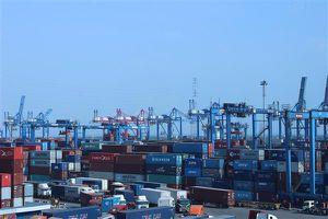 Hạn chế hàng về cảng, Cát Lái phụ thu một số dịch vụ đối với container nhập cảng