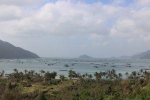 Bảo vệ môi trường vùng nuôi thủy sản