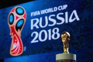 3 ngày VTV phát hiện 700 trường hợp vi phạm bản quyền World Cup