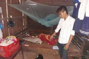 Đắk Lắk: Bắt khẩn cấp 9X hiếp dâm bé 8 tuổi