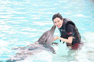 Top 9 Hoa hậu Du lịch Quốc tế Emily Hồng Nhung đón sinh nhật bên cá heo