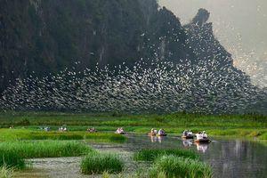 Phát triển du lịch dựa vào tự nhiên
