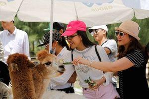 Hệ sinh thái chuỗi quần thể Tập đoàn FLC: Nơi thăng hoa kỳ nghỉ vui nhộn và bổ ích cho trẻ