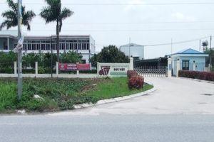 UBND tỉnh Hưng Yên chỉ đạo kiểm tra, xử lý nghiêm hành vi xả thải gây ô nhiễm môi trường đối với Công ty Cổ phần thực phẩm Đức Việt