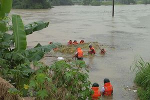 Hà Giang: Mưa lũ 'tàn phá' gây thiệt hại nặng nề