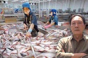 Lỗ đậm 700 tỷ đồng, 'vua cá tra' Hùng Vương chật vật xoay vần