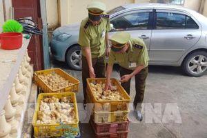 Lạng Sơn liên tiếp bắt giữ nhiều vụ buôn lậu