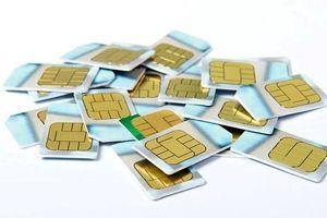 Thu giữ hàng nghìn chiếc SIM điện thoại nhập lậu từ Trung Quốc