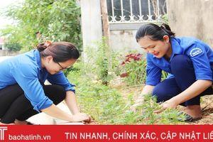 Vườn ươm thanh niên: Thiết thực góp phần xây dựng đô thị văn minh