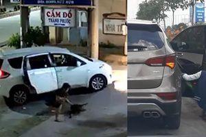 Dùng xe hơi để đi trộm chó và cây cảnh