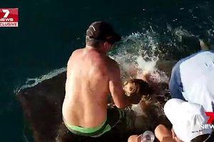Nữ du khách bị cá mập lôi xuống nước khi cho con vật ăn