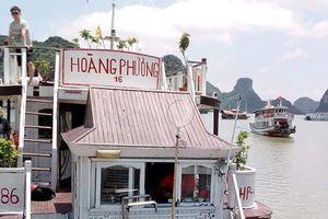 Nữ du khách Úc gặp 'ác mộng' tại Hạ Long sẽ trở lại Việt Nam
