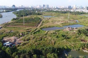 TP.Hồ Chí Minh: Nhiều cán bộ lãnh đạo bị kỷ luật vì liên quan đất đai