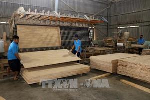 Lâm sản xuất siêu cao nhất trong các mặt hàng xuất khẩu của ngành nông nghiệp