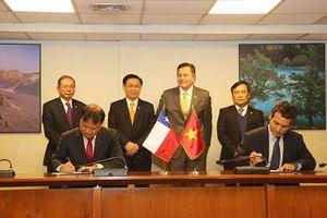 Việt Nam- Chile: Tận dụng CPTPP để kết nối thị trường
