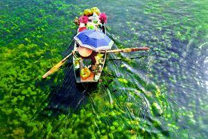 Cảnh đẹp mọi miền Tổ quốc ngày đầu vòng 1 cuộc thi ảnh Sài Gòn 2018