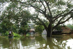 Đẩy mạnh công tác chủ động phòng chống thiên tai mùa mưa bão