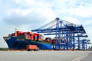 Cụm cảng Cái Mép - Thị Vải duy trì đà tăng trưởng khả quan