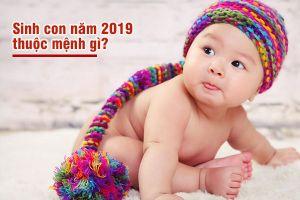Sinh con năm 2019 thuộc mệnh gì, có hợp với bố mẹ không?