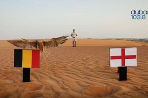 Số đông tiên tri động vật thích Bỉ thắng Anh để đoạt hạng 3