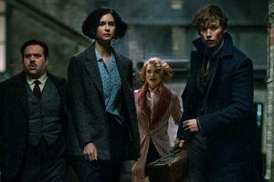 'Fantastic Beasts' tung ảnh mới: Newt Scamander thời trẻ và thầy Dumbledore tại Hogwarts