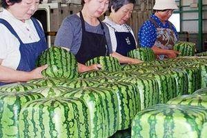 Đại gia Việt: Nhà giàu ăn gì tuần qua?