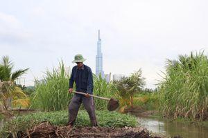 26 năm sống trên dự án treo và nỗi khổ của 'đại gia đất' Thanh Đa