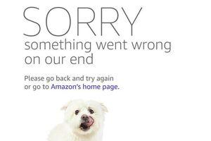 Vì sao bạn nhìn thấy ảnh chú chó khi website Amazon bị sập?
