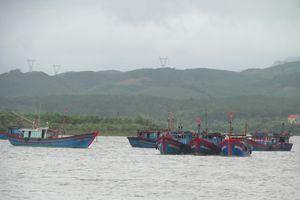 Quảng Bình: Tiếp tục kêu gọi tàu thuyền tránh trú bão
