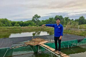 Chàng thanh niên từ bỏ lương cao về nuôi cá Chình kiếm hàng trăm triệu mỗi năm