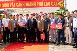 Lào Cai: Hội Sinh Vật Cảnh nỗ lực góp phần xây dựng Nông thôn mới