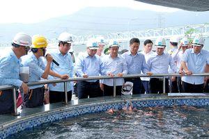 Thủ tướng Nguyễn Xuân Phúc thị sát hoạt động của Formosa Hà Tĩnh