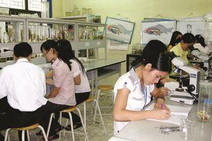 Đào tạo giáo viên trong trường sư phạm: Có tốt rễ mới bền gốc